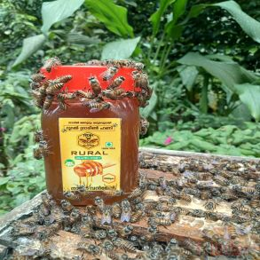 RURAL GRAMIN HONEY 250g